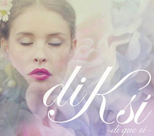 Logo Diksi realizado por Trafico Grafico