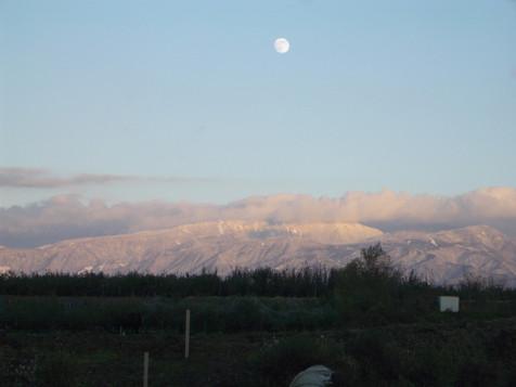 2007-11-23-16-14-07 IMGP0902.jpg