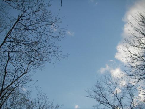 2005-05-02-17-22-47.jpg