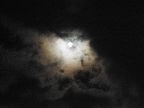 2009-12-30-19-02-55-0.jpg