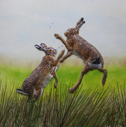 The Rare Moorland Hare SOLD