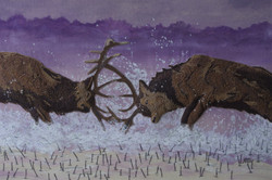 Stags At Dusk SOLD