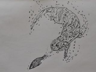 Otter Design