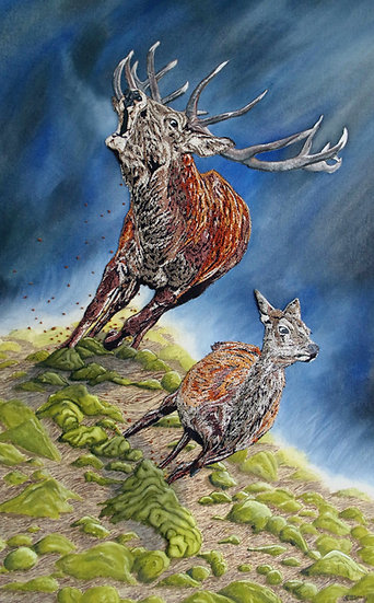 The Bellowing Stag