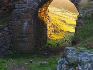 The Beauty of Bodmin Moor