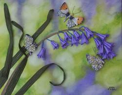 Bluebells and Butterflies SOLD