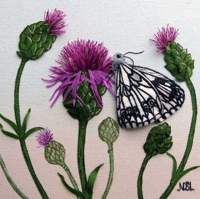Butterfly Com.JPG