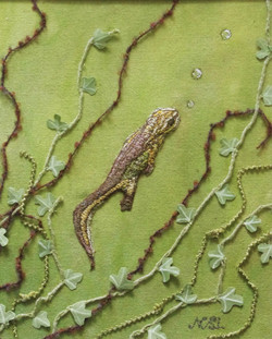 One Newts Journey Up (SOLD)