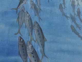 Painting Pilchards
