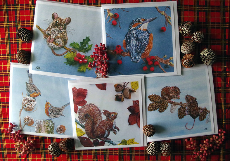Pack Of 5 Mixed Wildlife Christmas Cards