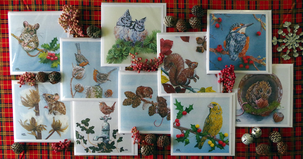 Pack Of 10 Mixed Wildlife Christmas Cards