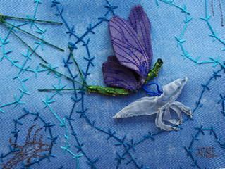 The Fight And Flight Of The Mayfly