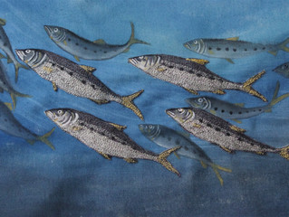 Embroidering Pilchards
