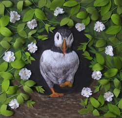 A Puffin Burrow SOLD