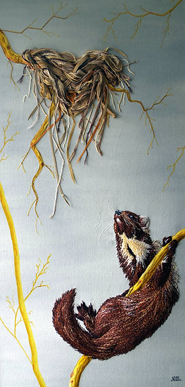 The Foraging Pine Marten