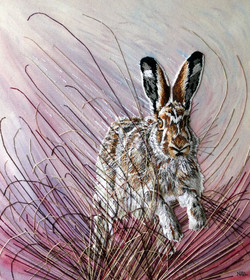 The Mountain Hare SOLD