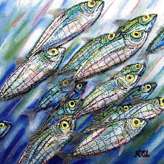 Sardine Rush