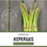 ASPERGES.png