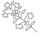 Chamba Painting Flower