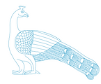 Sanchi Peacock