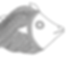 Dokra Fish