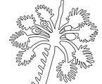 Pithora Tree
