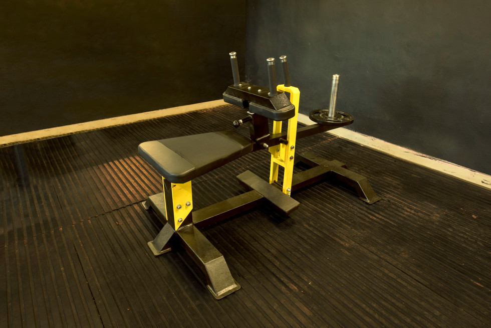 dsc_8756_seated-calfjpg