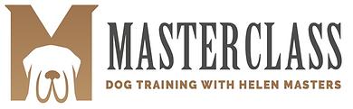 Masterclass logo 2.png