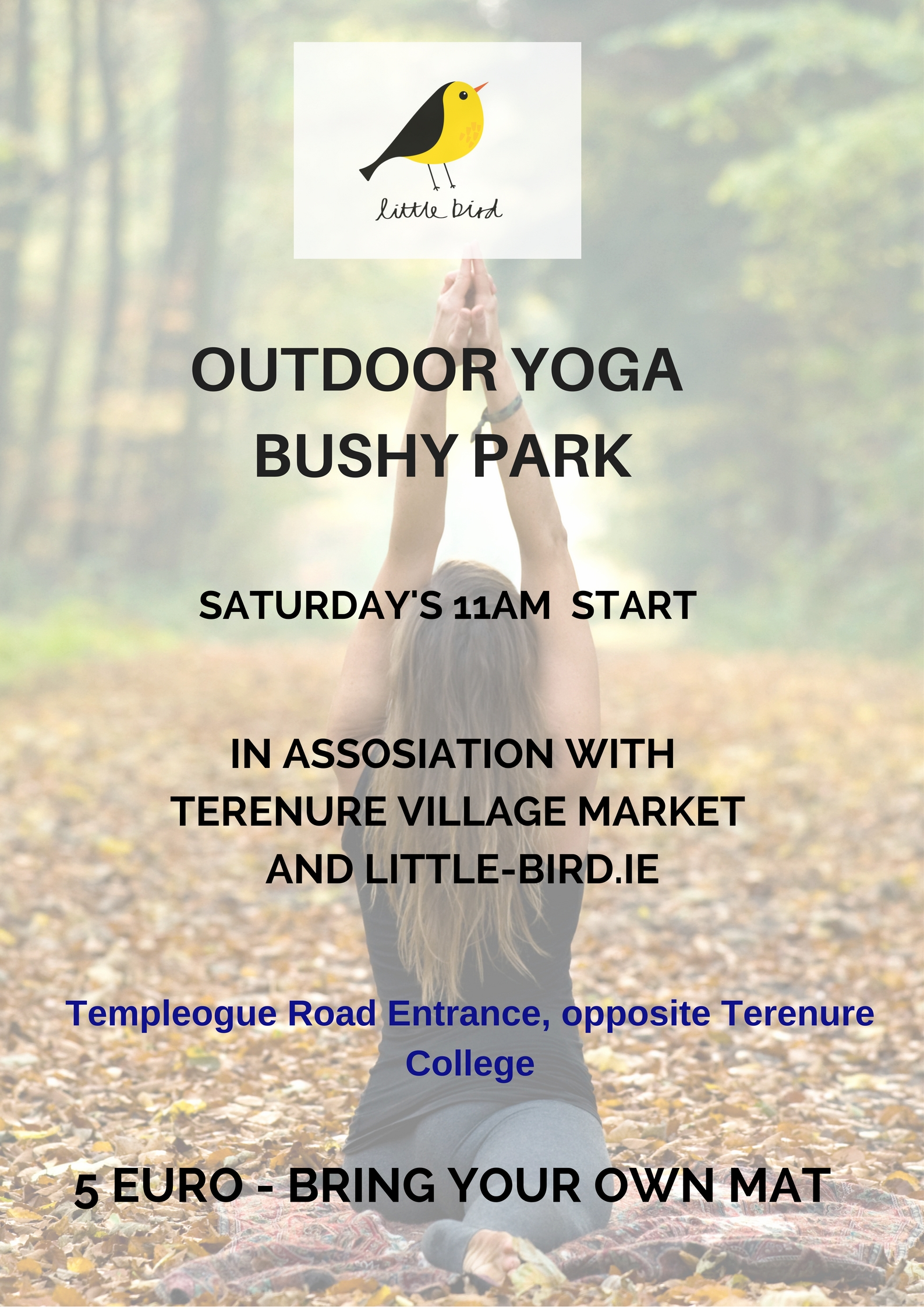 Yoga in the Park September