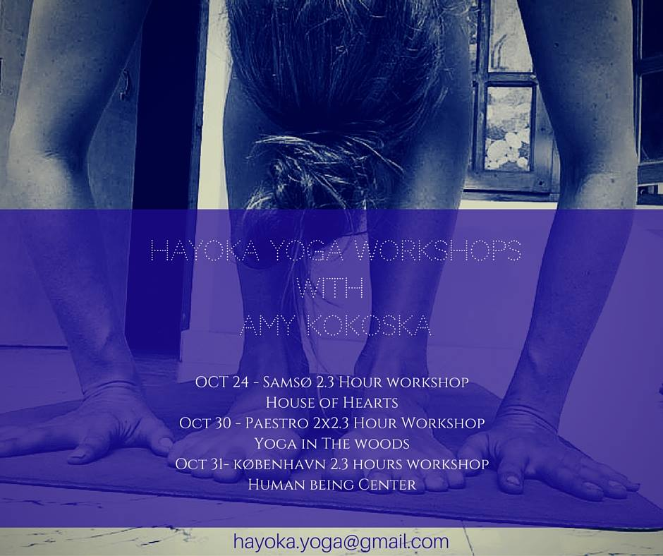 DENMARK WORKSHOPS
