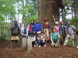 森林セラピー体験ツアー