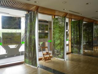 近畿中国森林管理局:森林のギャラリー パネル展示