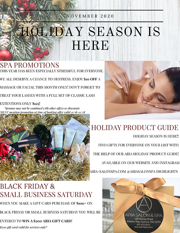 HOLIDAY NEWSLETTERS (NOV. DEC.).png