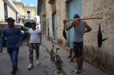 Havana Life.JPG
