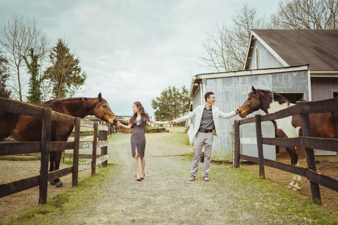 Villa_Li_VA_Engagement_Farm