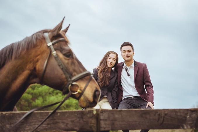 Villa_Li_VA_Engagement_Farm_horse_photo