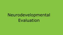 Neurodevlopmental