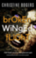 2 Book Cover Broken Winged flight.jpg