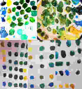 de verschillende resultaten van seniorcursisten, mengen van gelen en blauwen