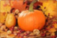fall_scene_main.jpg