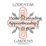 80pt_HAP Logo for Lodestar-1.png