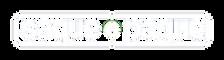 logo_SaqueePague_Elofy.png