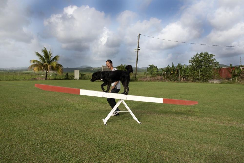 Z'animos Martinique - Passage de la balançoire avec Spark
