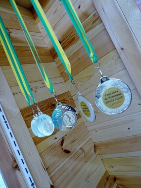 petanque competition medals