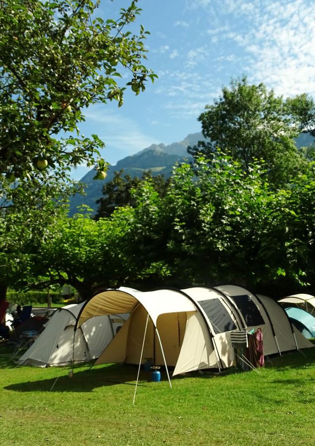 tree tent location
