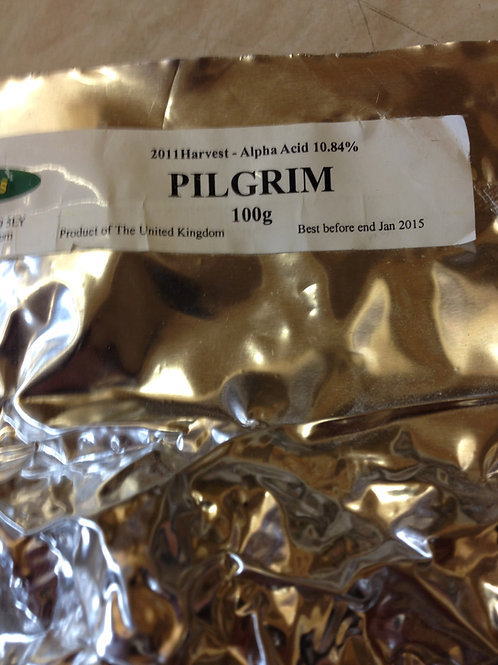 Pilgrim (UK) Whole Hops 100grams