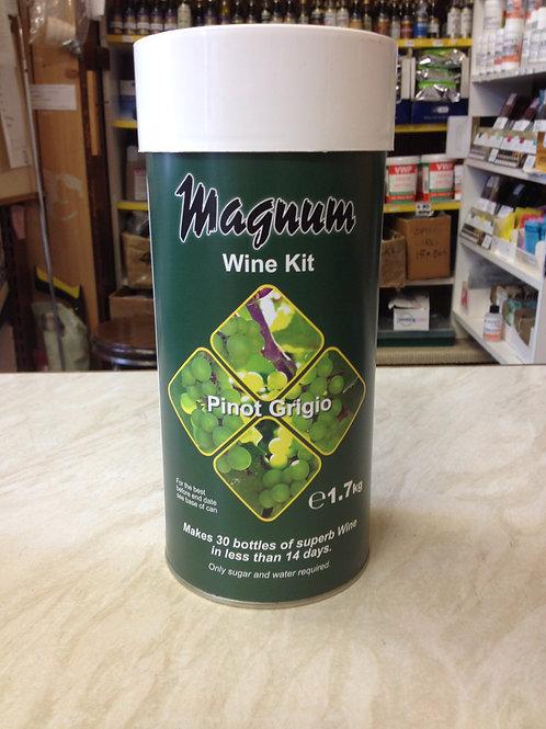 Magnum Pinot Grigio Wine 30 bottle kit