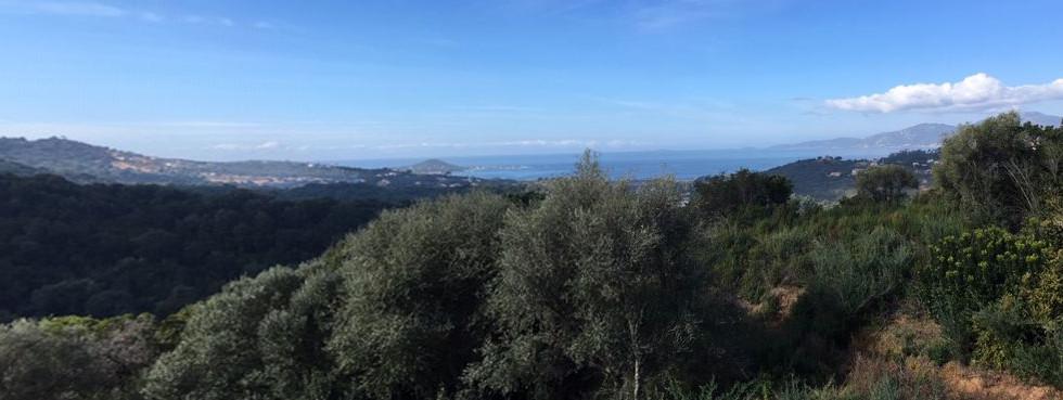 Panorama Iles Sanguinaires
