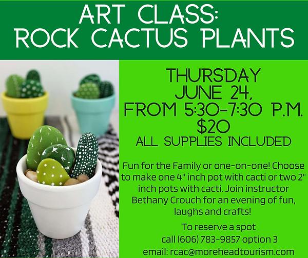 Art Class Rock Cactus Plants.png