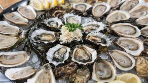 Oyster Bash Returns
